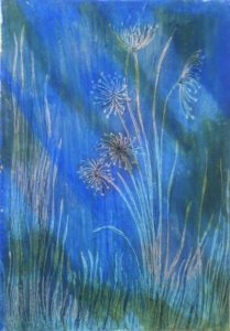 Rapsidy in Blue by susan taylor