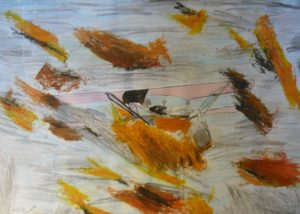 Plane on Fire by anil