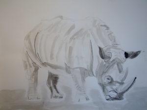 Rhino by Maximillian