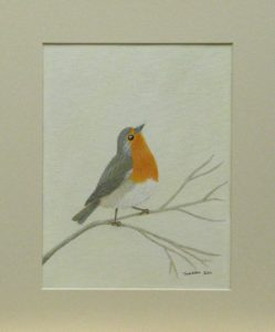 Robin – little bird by Theresa Cope