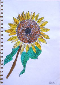 Sunflower by Royd Sanders