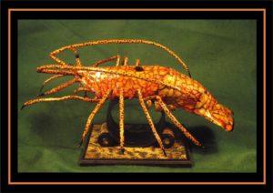 Crayfish lobster by Kuriologist