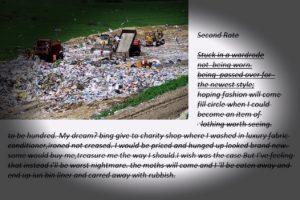 rubbish by Pauline Heath