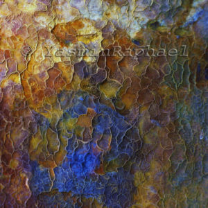 Corroded Iron Reticulation # 2 by Yasmin Raphael