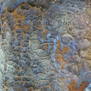 Corroded Iron Reticulation # 3 by Yasmin Raphael