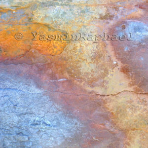Corroded Iron Reticulation # 6 by Yasmin Raphael