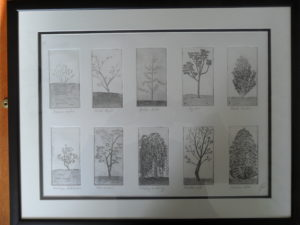 The trees in our garden by Ken Gowers