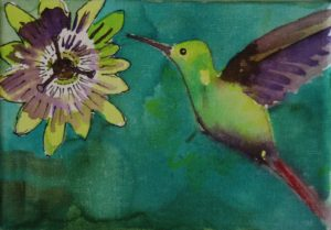 Hummingbird with Passion Flower by Sarah Ward