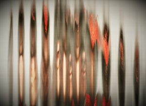 scintillation_hayley_hare__1_ by Hayley Hare