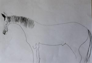 Horse by Sebastian Goschen