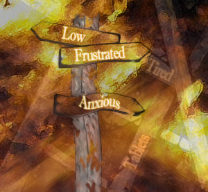Lost. by Amanda Riley
