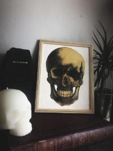Human Skull by Rosie Clayton
