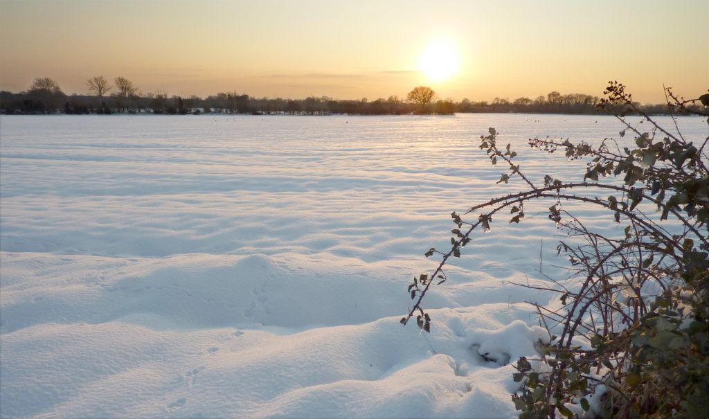 16763    1966    Snowy Sunset    £40    4120