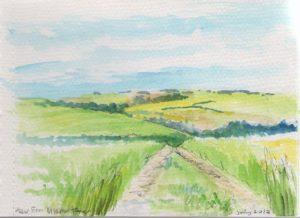 Fields in Somme by James Trueman