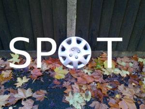 Spot by G.E.W. Shepherd