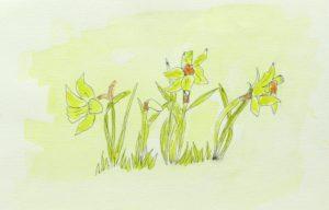 Spring by Ali