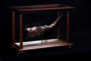A Rare Bronze Auger-Tail Fish. by Ross Gilbertson