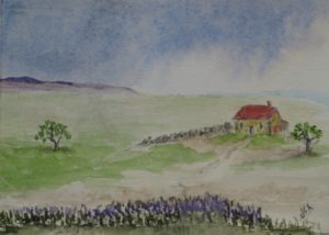 Remote Cottage & Heather by Sylvia Scarsbrook