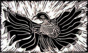 Sunbird by Tahel Littauer