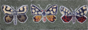 three_tiger_moths__acrylic_on_paint_on_canvas_board__17_x_22_cm by Otis Berry