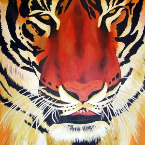 Tiger by john anderson