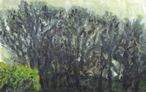 Mist in the Trees by Rowena Turney