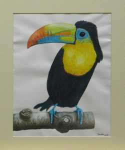 Toucan – big bird by Theresa Cope
