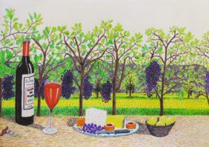 Vine yard in northern Spain by Barry Skinner