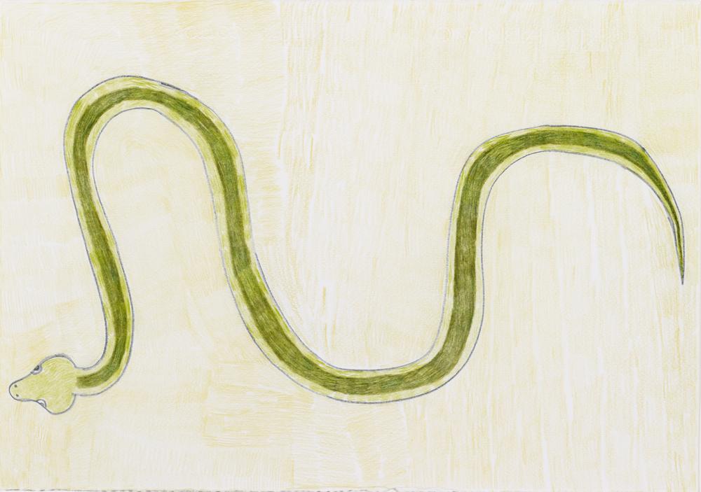 13568 || 3029 || Dream Snake || £250 || 5672