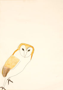 Owl by Self-Portrait