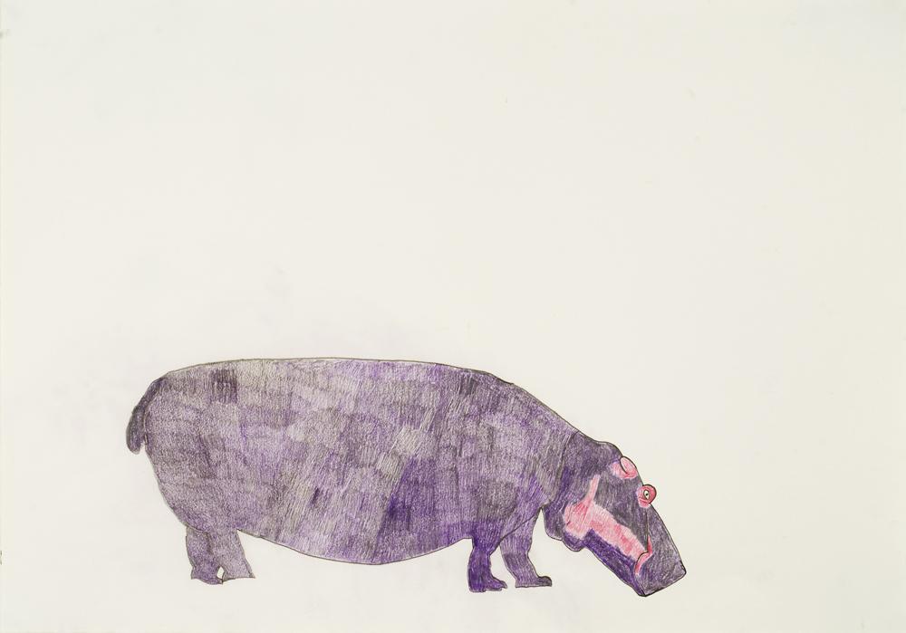 13571 || 3029 || Hippopotamus || Sold || 5672
