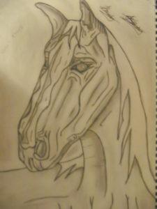 War Horse by jon-green