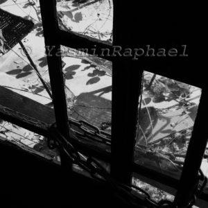 Abandoned House #5 by Yasmin Raphael
