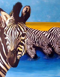 Zebra by john anderson