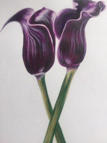 Black Lillies by Danielle Hammond