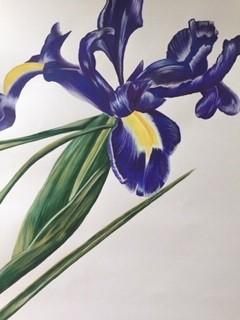 the third iris by Danielle Hammond