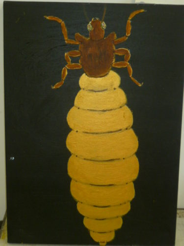 termite by John Nugent