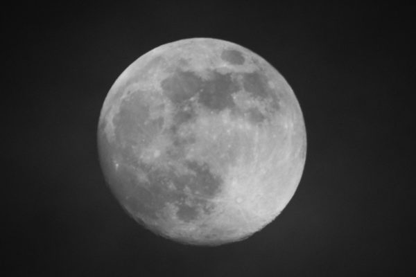 DSC_0060-moon-19-04-2019-contrast.jpg by Sue Daniels