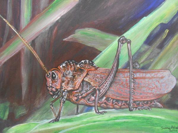 Rainforest monster by Suna Akiah