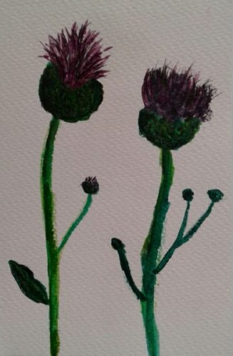 Fighting Thistles by John Nugent