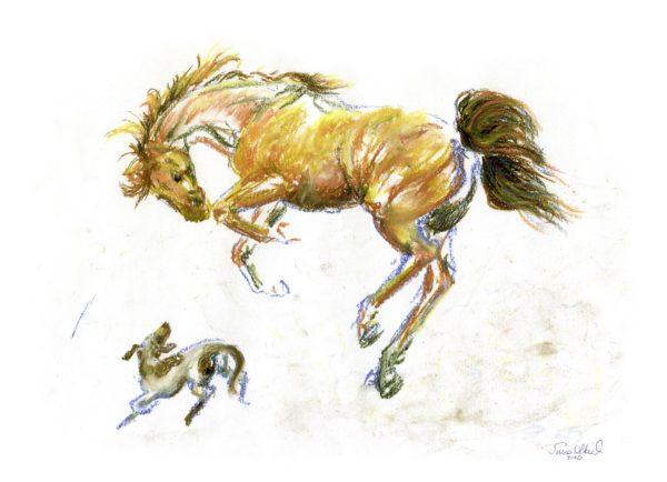 Horse Play by Suna Akiah