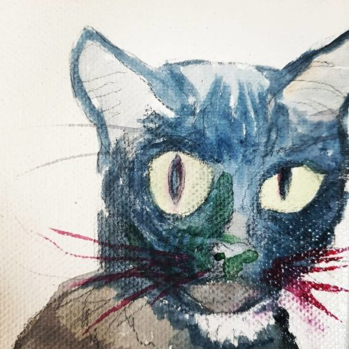 Pet Portrait by Ana Tewson-Bozic
