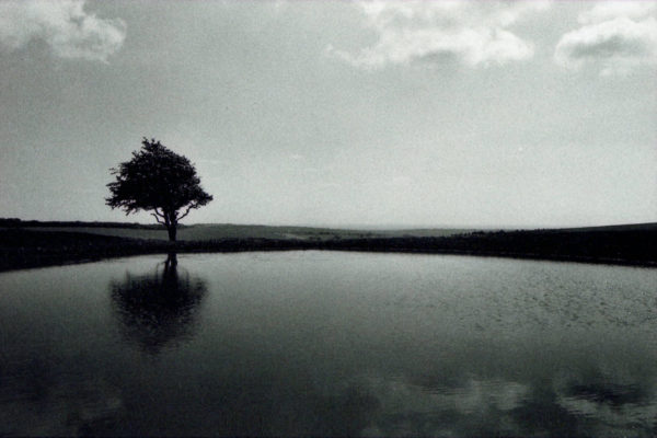 Untitled, South Downs by Fen Kerrison