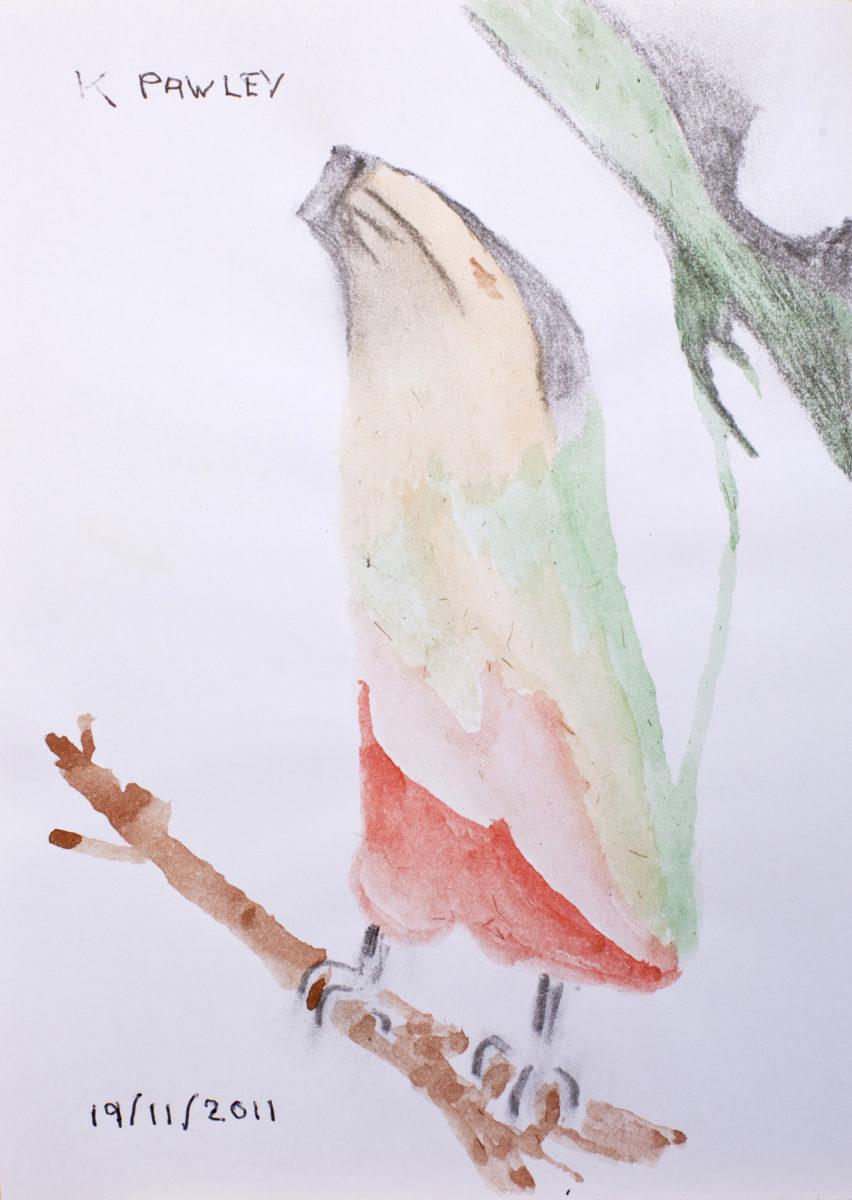 12225 || 2792 || Bannana and Bird
