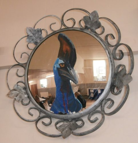 Cassowary Mirror by The Price of Oil