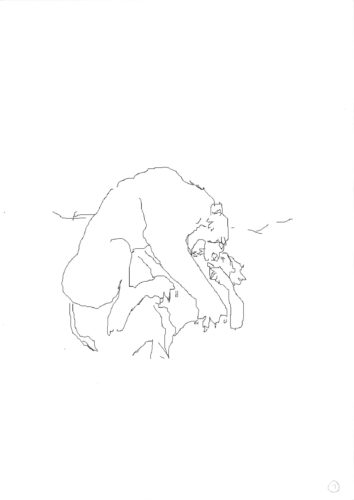 Illustrations by Gary Barton