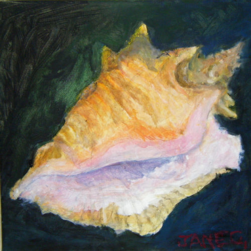 Sea Shell by Jane Corpes