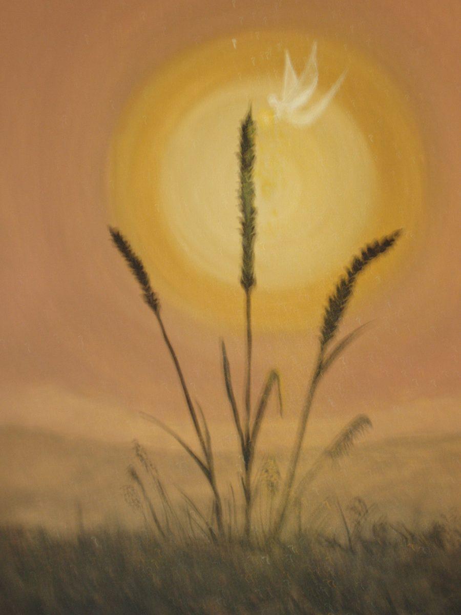 174    773    Dawn's Gifts Debra Phillips-Machin