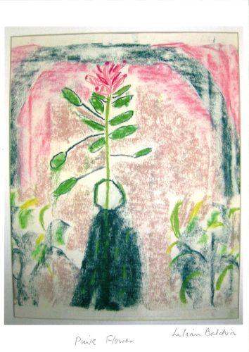 Pink Flower by Lilian Balchin