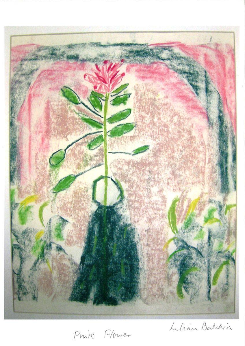 494 || 937 || Pink Flower Lilian Balchin